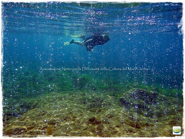 snorkeling co2 castello aragonese