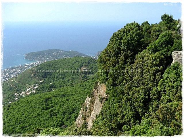 panorama di Ischia dal sentiero dei Frassitelli